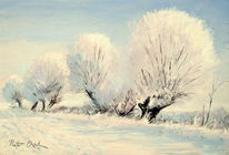 Winter, Weiden, Landschaft, Schnee