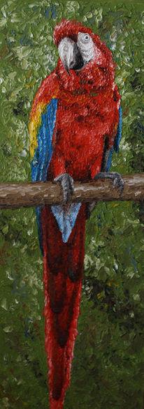 Irina wall, Tiere, Tiermalerei, Papagei