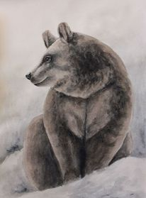 Bär, Tiermalerei, Aquarellmalerei, Irina wall