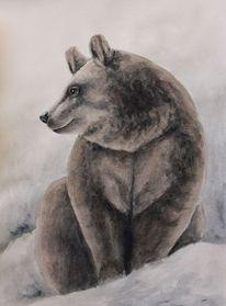 Tiere, Tiermalerei, Aquarellmalerei, Bär
