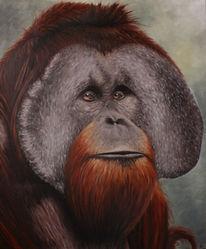 Menschenaffen, Orang utan, Tiere, Tiermalerei