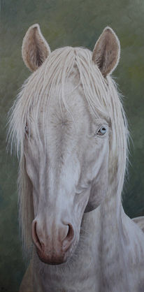 Tiere, Tiermalerei, Pferde, Irina wall