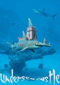 Hammerhai, Unterwasser, Irina wall, Fotomontage