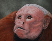 Tiermalerei, Uakari, Tiere, Irina wall