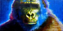 Gorilla, Affe, Menschenaffen, Portrait