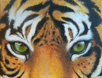 Acrylmalerei, Augen, Portrait, Tiger