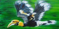 Vogel, Hornbill, Im flug, Nashornvogel