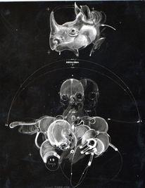 Rhinocéros, Homme, Malerei,
