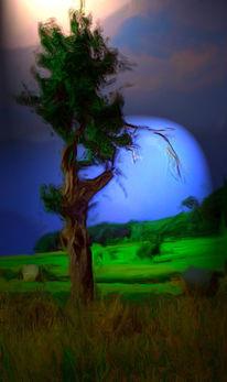 Stimmung, Landschaft, Baum, Digital