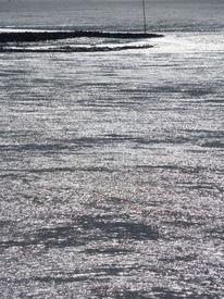 Muschel, Netz, Nordsee, Sonne
