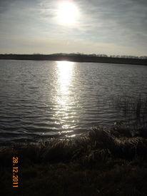 Wasser, Löcknitz, Fotografie, Mecklenburg