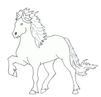 Linie, Pferde, Isländer, Pony