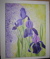 Malerei, Pflanzen, Iris, Blumen