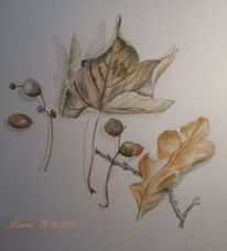 Herbst, Gelb, Blätter, Laub