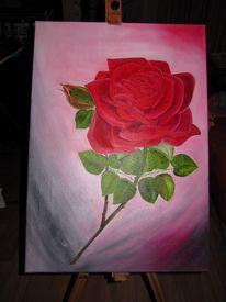 Rose, Rot, Malerei, Pflanzen