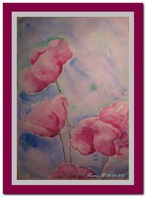 Blau, Blumen, Mohn, Rosa
