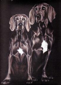Portraitkunst, Tierzeichnung, Tierportrait, Hundeportrait