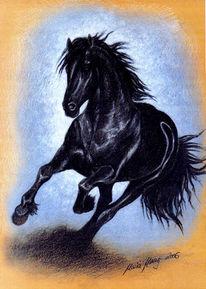 Pferdeportrait, Portraitzeichnung, Tierzeichnung, Tierportrait