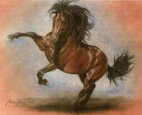 Malerei, Pferdeportrait, Portrait, Tiermalerei
