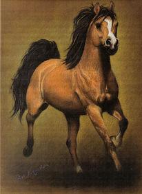 Malerei, Pferdezeichnung, Pferde, Tiermalerei