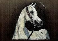 Malerei, Pferdezeichnung, Tiermalerei, Tierportrait
