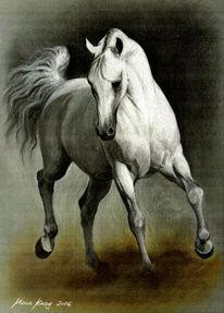 Tierportrait, Portraitzeichnung, Tierzeichnung, Auftragsmalerei