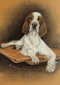 Tiermalerei, Welpe, Hundeportrait, Malerei
