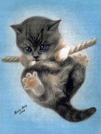 Katzenportrait, Portraitkunst, Tierportrait, Katzenzeichnung