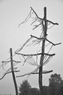 Fotografie, Abstrakt, Grau, Natur