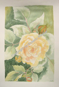 Blumen, Flora, Natur, Malerei