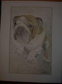 Hund, Zeichnungen, Tiere,