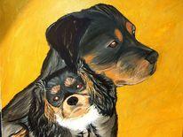 Spaniel, Rottweiler, Hund, Kavalier