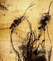 Tuschezeichnung, Quelle, Dürr, Zeichnungen