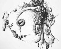 Abstrakt, Zeichnung, Feder, Pinsel