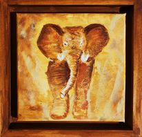 Tiere, Safari, Natur, Elefant