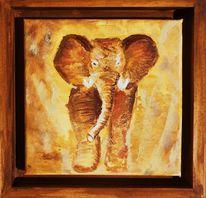 Natur, Elefant, Braun, Ocker