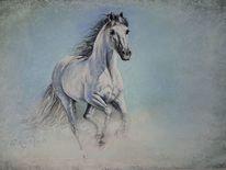 Kreide, Magie, Hengst, Pastellmalerei