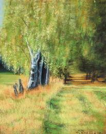 Pastellmalerei, Birken, Wiese, Landschaft