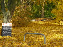 Fotografie, Digital, Herbst