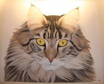 Kater, Katze, Aquarell, Tiere