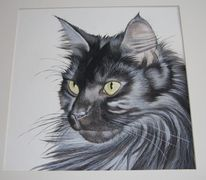 Katze, Aquarellmalerei, Portrait, Aquarell