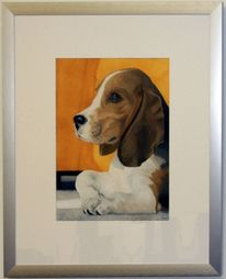 Beagle, Aquarell