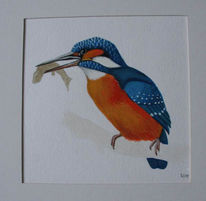 Vogel, Eisvogel, Aquarell, Tiere