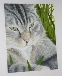 Tiere, Kater, Aquarellmalerei, Tiermalerei