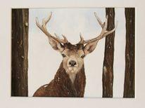 Aquarellmalerei, Tiere, Hirsch, Aquarell