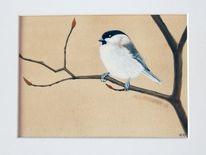 Tiere, Sumpfmeise, Aquarellmalerei, Meise
