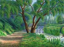 Landschaft, Baum, Grün, Wesser