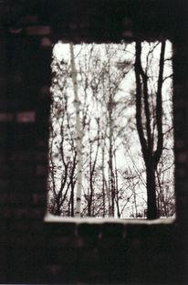 Fenster, Schnee, Freiheit, Winter