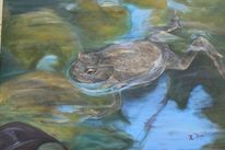 Kröte, Tiere, Teich, Acrylmalerei