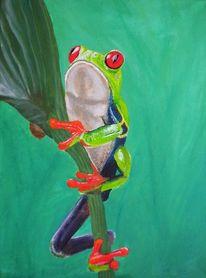 Natur, Tiere, Frosch, Pflanzen